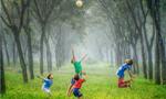 Comportamento antissocial tem um papel impactante na vida de crianças dos 6 aos 11 anos