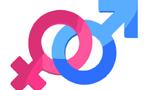 Existem diferenças de gênero entre os bolsistas produtividade do Conselho Nacional de Desenvolvimento Científico e Tecnológico (CNPq)?