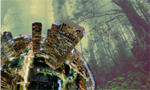 Para reverter a crise ambiental
