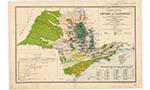 Avanço do agronegócio no Oeste paulista durante o século XIX e a violência contra os povos indígenas