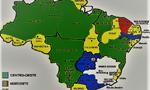 Um mapa do combate ao gênero nos planos da educação brasileira