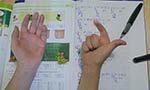 A relação entre cognição e desempenho em matemática